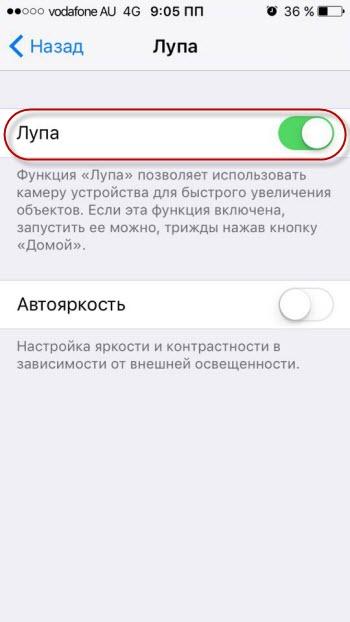 Как сделать/отключить лупу на айфоне