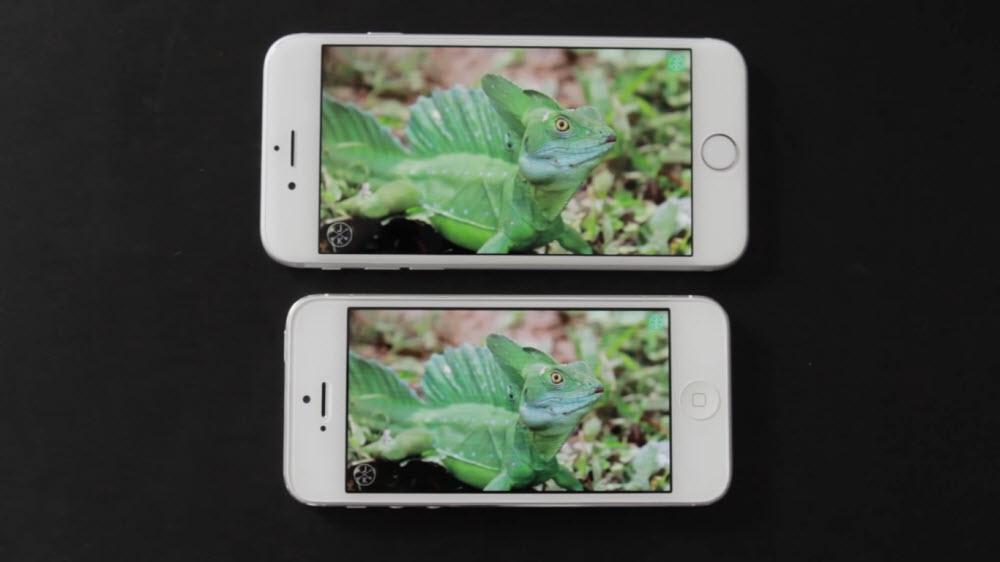 что лучше купить iPhone 5 или iPhone 6