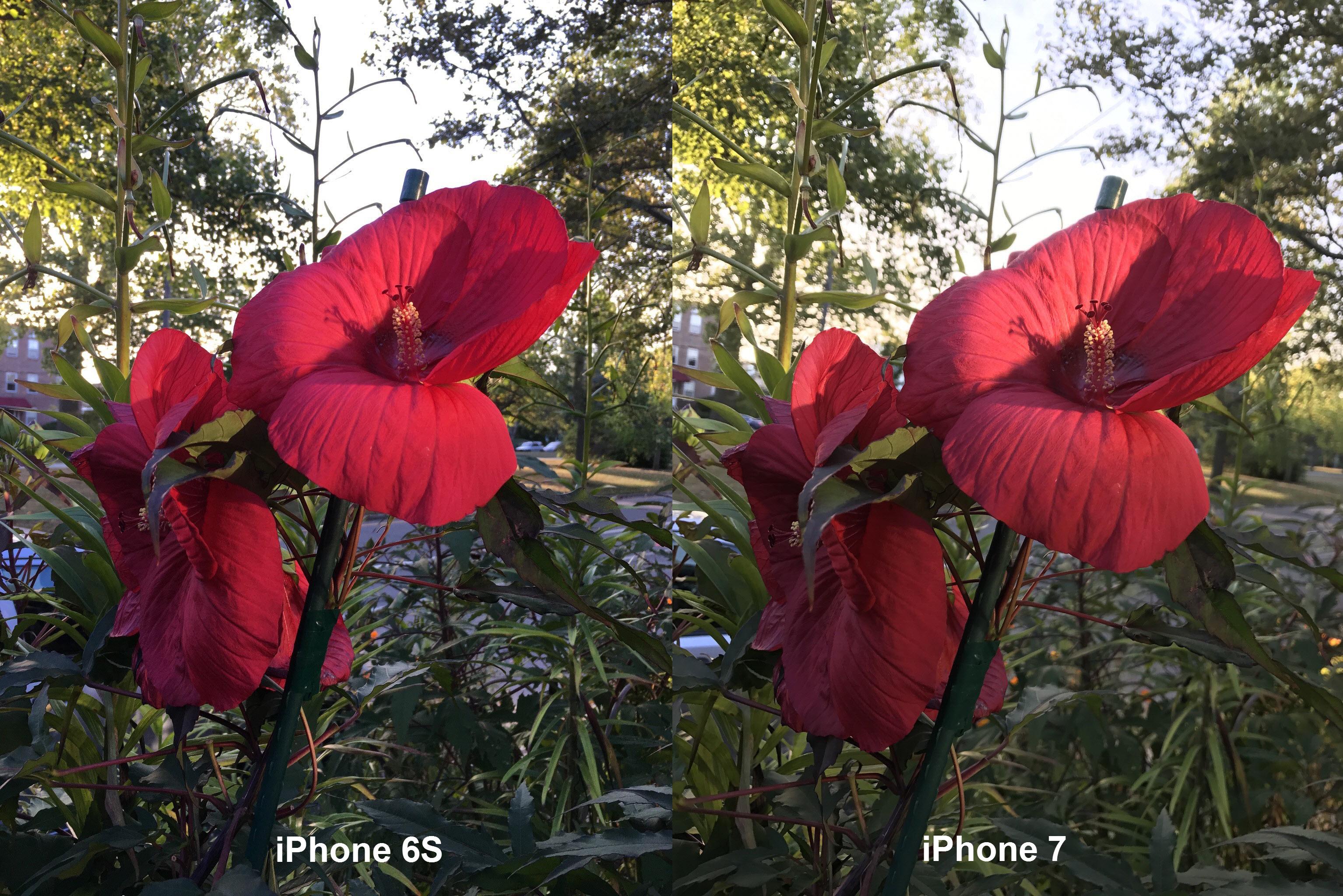 камера 6s и 7