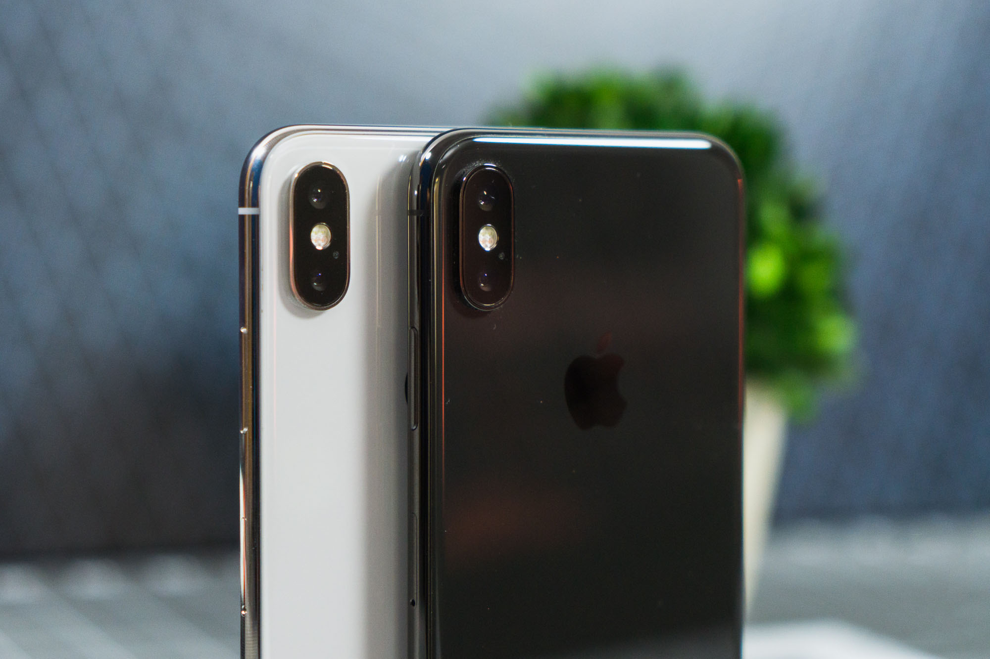 Айфон 10 цвета