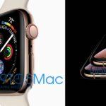 Появились первые изображения iPhone XS и Apple Watch Series 4
