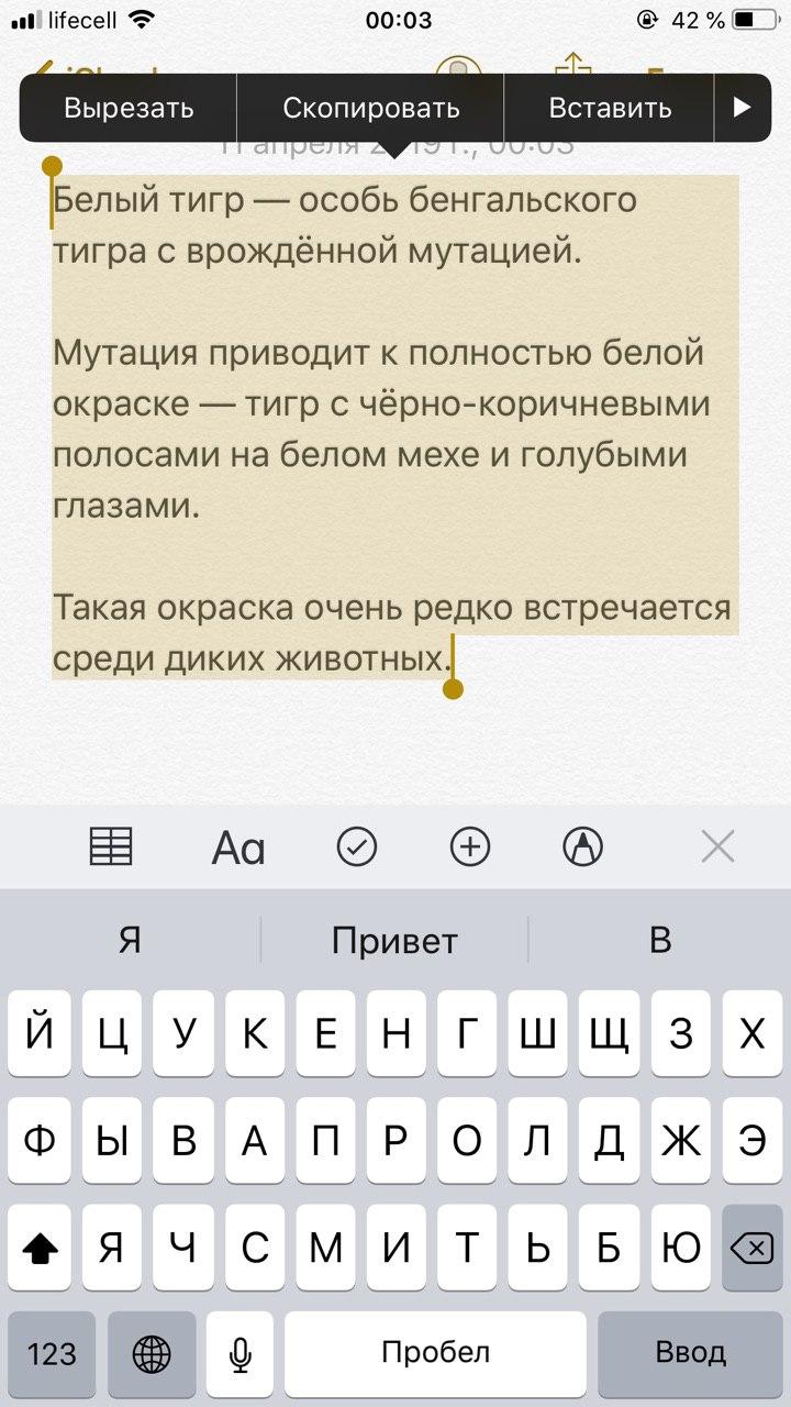 Копируем текст