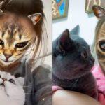 Маска кошки в Инстаграм. Где найти?