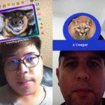 Маска «Кто ты из животных» в Инстаграм. Как посмотреть?